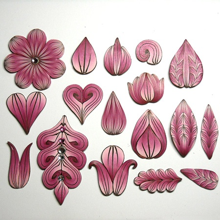 The Many Shapes of Petals